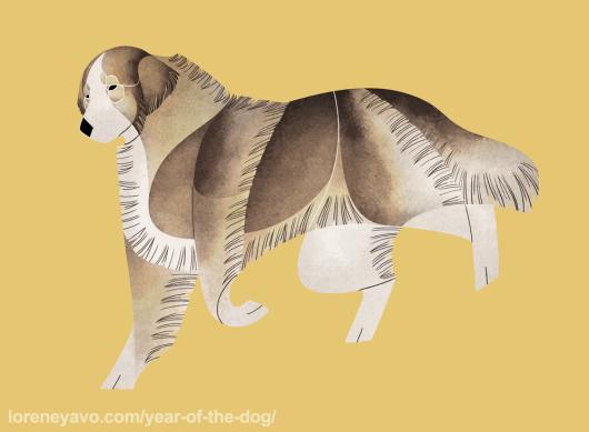 Carpathian Sheepdog