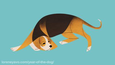 Finnish Hound