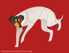 Japanese Terrier