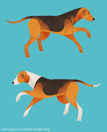 Serbian Hound and Tricolour Hound
