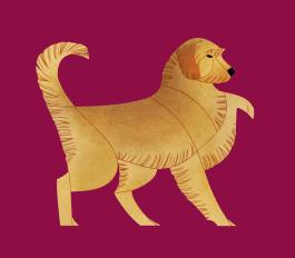 Styrian Coarse-haired Hound