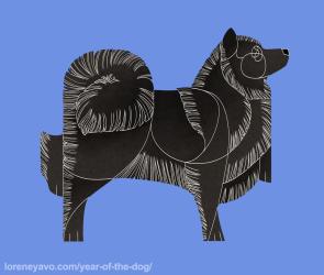 Swedish Lapphund