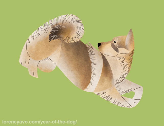 Swedish Vallhund